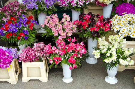 various flowers in street market Stock Photo - 17386760