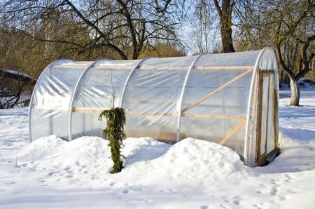 handmade polythene greenhouse for vegetable  in winter  on snow photo