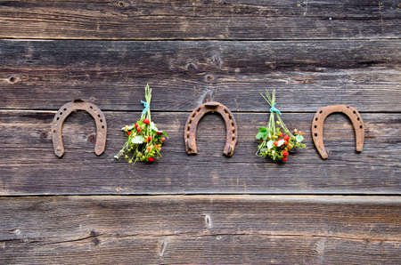 three rusted horseshoe and wild strawberry bunch on old wooden wall Stock Photo