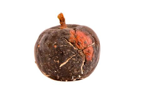 dark one rotten apple fruit isolated on white background