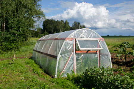 plastic agriculture greenhouse hothouse in summer farm garden photo