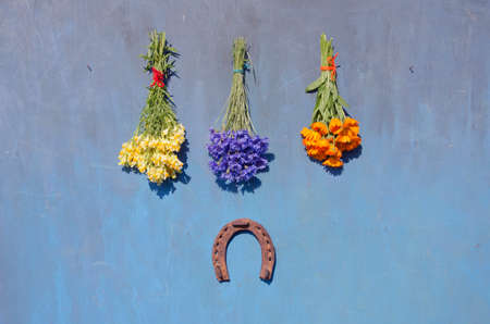 flower bunch: luck symbol old rusty horseshoe and medical herb flower  bunch on blue wall Stock Photo