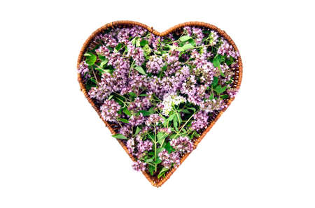 wild marjoram oregano medical and spices flowers in heart form wicker basket. Isolated on white health symbol