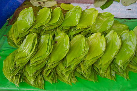 betel leaf: stack of green fresh betel leaf in asia street market, India