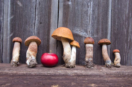 orange cap boletus mushrooms  and red apple on old wooden background photo
