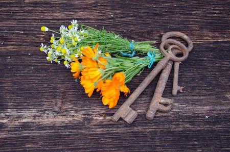 key of health - medical herbs and old tools on wooden backgeound