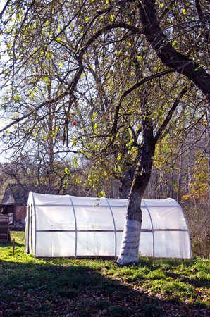 primitive plastic greenhouse in farm autumn  time garden orchard photo