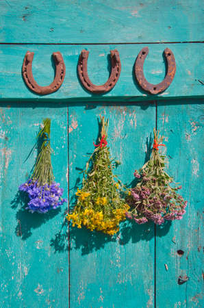 flower bunch: healthy lucky life background - old horseshoe and medical flower bunch on farm door Stock Photo