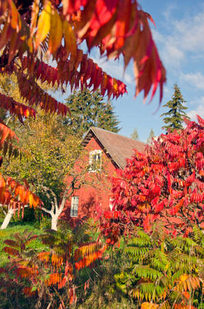 autumn time october house in village Editorial