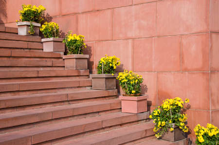 flowerpots: red stone staircase with flowers in flowerpots, India