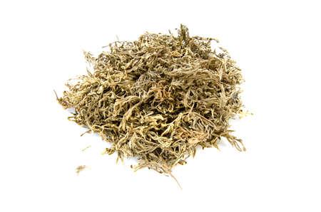 absinthe: hierbas medicinales seca artemisa ajenjo ajenjo secos aislados sobre fondo blanco