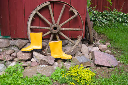 horse and carriage: yellow gardener rubber boots in farm near old horse carriage wheel