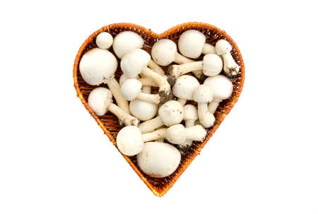 agaricus: Raw white wild mushrooms champignons Agaricus in heart form basket isolated on white