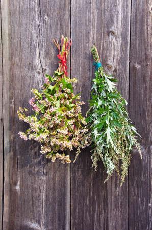 medical  plant: trigo sarraceno y la planta m�dica artemisa Artemisia vulgaris mont�n en la pared vieja granja de madera