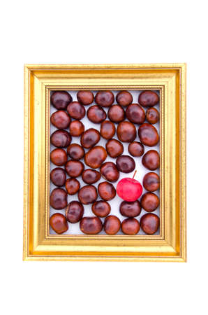 conker: conker fruits and one red apple in in golden retro frame isolated on white Stock Photo