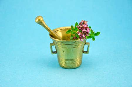 wild marjoram: wild marjoram oregano herbs in old brass mortar on blue background Stock Photo