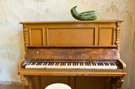 antique musical instrument piano and green zucchini courgette in old manor room
