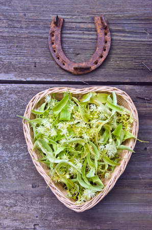 limetree: Lime tree blossoms in a heart shaped wicker basket with a rustic horseshoe on wooden background