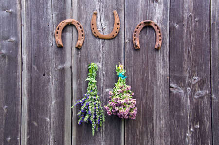 hyssop: Two bundles of oregano and hyssop herbs and three horseshoes hanging on old wooden wall