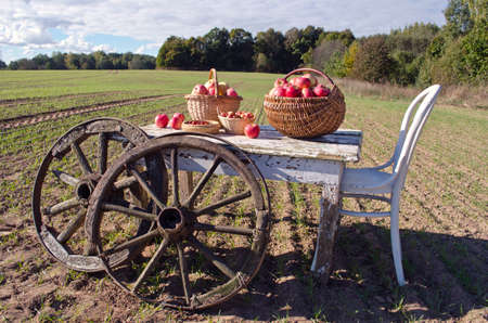 antique chair: Wooden table with a chair, autumn apples and antique wooden wheels on farm field. Harvest concept