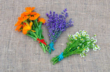 bundles: Bundles of fresh chamomile, calendula and lavender on linen background