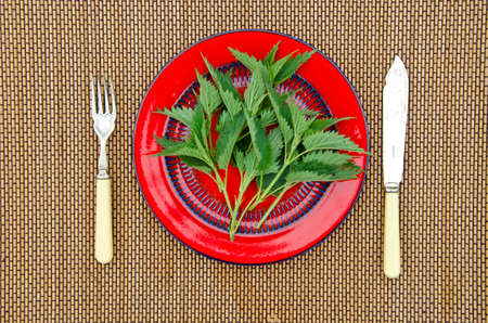 young knife: Young green nettles in red plate with a fork and knife on bamboo mat Stock Photo