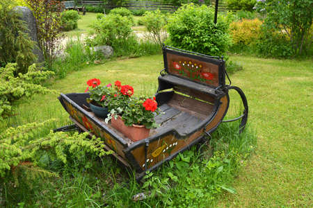 horse sleigh: old rusty wooden sleigh with flower pots  in ranch yard Stock Photo