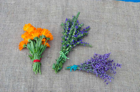 hyssop: medical herbs marigold, lavender and hyssop bunch on linen cloth