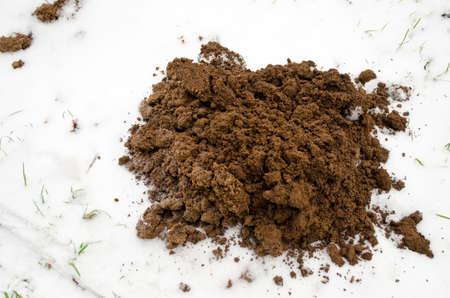 Fresh frozen mole molehill on winter time  snow Imagens