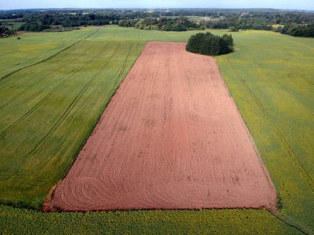 Freshly plowed summer time field, aerial view Stock Photo