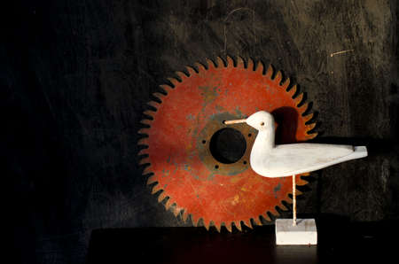 Nature morte still life with wooden white bird and old circuliar saw disc