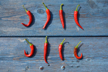 Closeup pods hot chili pepper on blue wooden garden table