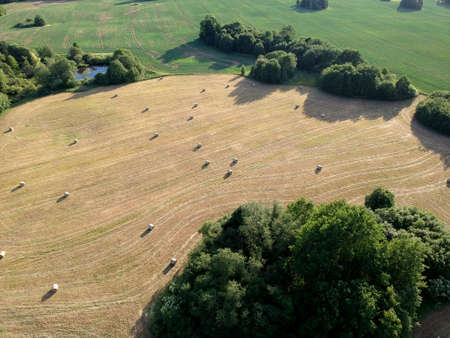Cut hay field with hay bale on meadow in summer, aerial view