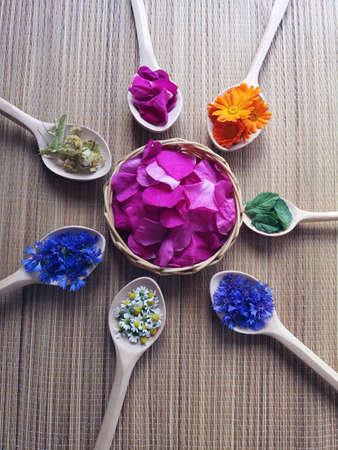 wooden spoons with medical herbs flowers on bamboo mat