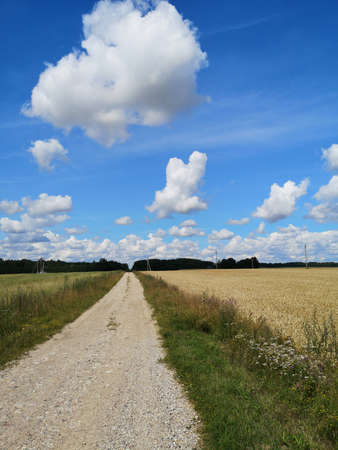 Summer empty country gravel road and clouds Stockfoto