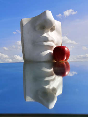 Plaster head model cast for drawing and red apple on mirror