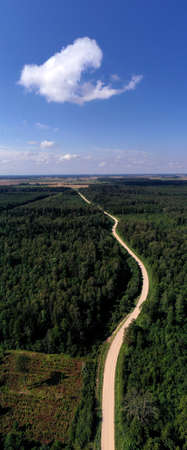 Summer time forest landscape with gravel road, aerial view Stockfoto