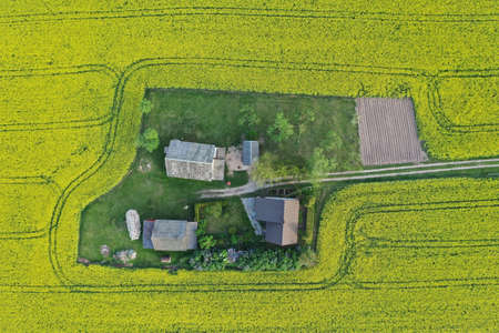 Homestead on yellow spring time rapeseed field, aerial view Stockfoto