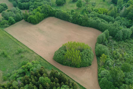 plowed sowed small agriculture field in nature park, aerial Stockfoto