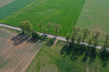 Rural road with old tree alley in nature park and agriculture tractor, aerial