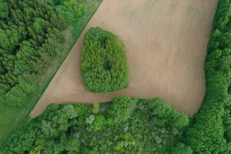 plowed agriculture field in nature park, aerial Stockfoto
