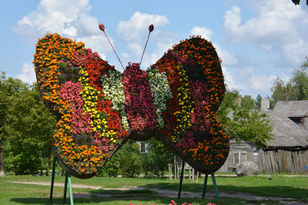 big butterfly symbol decoration made of many flowers in street