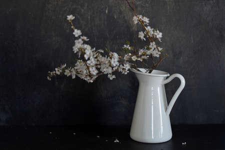 Spring flowering plum tree branch in jug on black wooden background