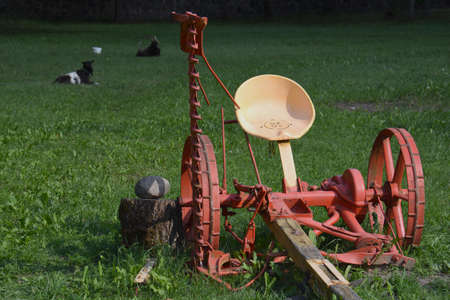 Historical agriculture horse power tools in manor park and goats Stok Fotoğraf