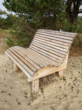 New wooden bench on sea dune sand near forest