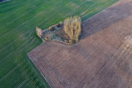 Farm fields from drone in spring, aerial