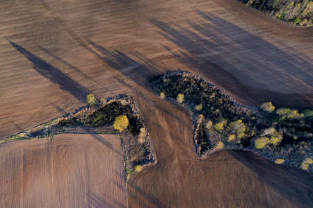 Plowed farm field in early spring and small grove trees in nature park, aerial Stok Fotoğraf