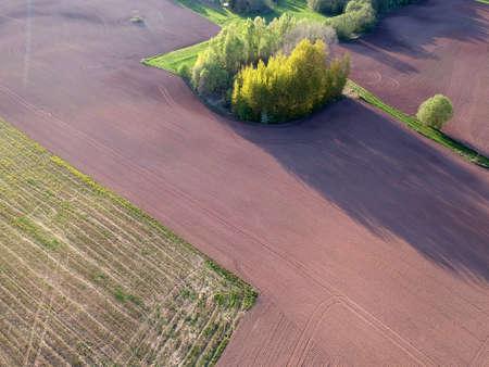 Plowed cultivated spring farmland fields with grove, aerial Stok Fotoğraf