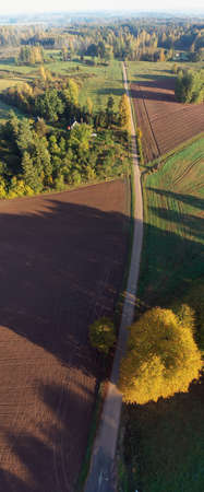 Autumn gravel road in nature park, vertical pano, aerial