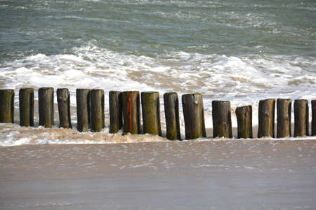 Old historical wooden pier logs in Baltic sea, Curonian spit national park